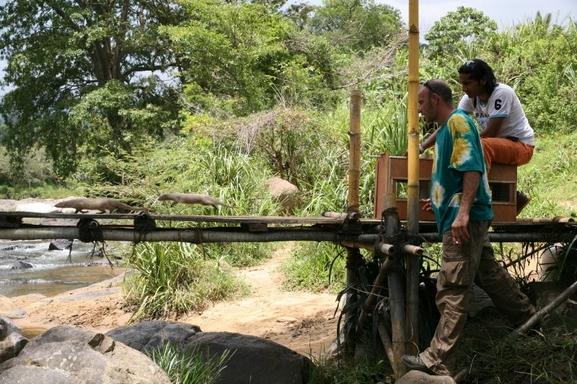 Christophe Debono, amoureux des animaux est le fondateur de la production animalière et audiovisuelle: L'Arche des Lumières. Avec lui, vous saurez tout du métier d'éducateur animalier! Ca vous tente ? On vous offre un stage de découverte à ses côtés!