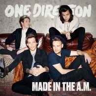 Le nouvel album des One D Made in the AM est dans les bacs, casting.fr vous offre leur single: Perfect