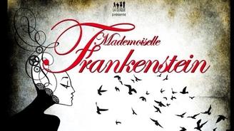 Avec Casting.fr découvrez la véritable histoire de Frankenstein à la Folie Théâtre
