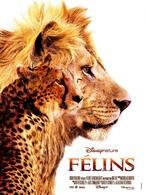 """""""Félins"""", un film majestueux en salles le 1 février !"""