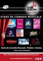Un stage de comédie musicale Broadway à Paris et à Aix-en-Provence, ca vous dirait? Casting.fr et Studio International vous offrent des places...