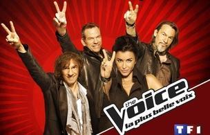 Stéphane Rizon, Grand Vainqueur de l'émission The Voice !
