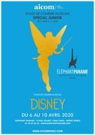 Elephant Paname et l'Aicom vous proposent un stage spécial kids comédie musicale DISNEY