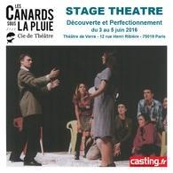 Remportez un stage de théâtre avec casting.fr et la compagnie: Les canards sous la pluie