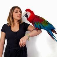 """Un bijou humoristique : gagnez des places pour le One Woman Show de Marion Mezadorian """"Pépites"""""""