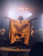 Concert de Tiken Jah Fakoly à Bercy