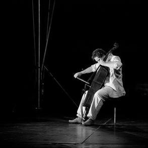"""Découvrez Erwan Le GUEN le jeune violoncelliste de l'équipe """"VRAIe !"""" la comédie musicale de Prisca DEMAREZ"""
