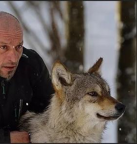 Christophe Debono, l'homme qui murmurait à l'oreille des animaux vous invite à découvrir le monde secret du métier de dresseur animalier.