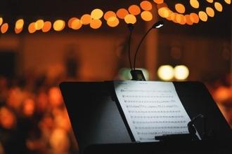 Recherche choristes et instrumentistes pour Académie du Palais Royal