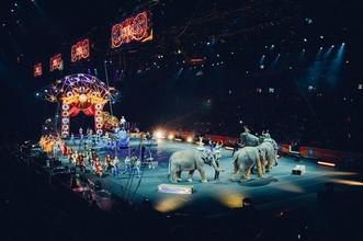 Recherche des artistes du cirque H/F pour un concours national et international