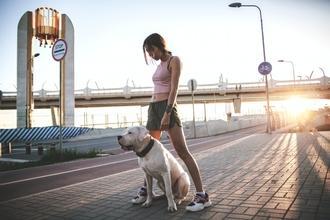 Casting homme ou femme avec chien pour jouer dans long métrage