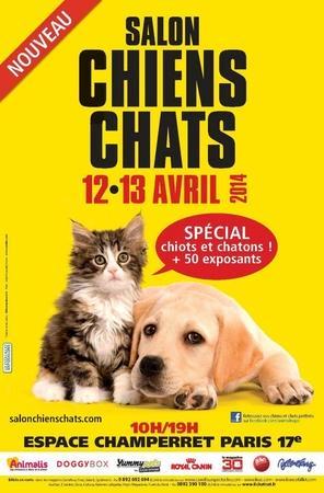 Salon Chiens Chats, les plus beaux animaux sur un même lieu !