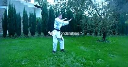 Danse martiale avec le vent